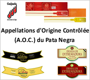 Appellations d'Origine Controlee Jambon Pata Negra