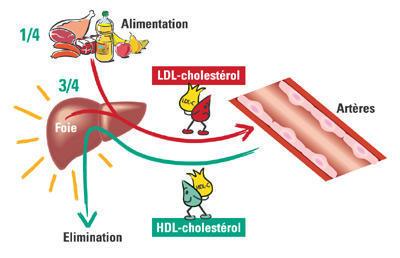 Le jambon ibérique est bon pour le cholestérol